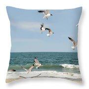 Gulls A Dance'n Throw Pillow