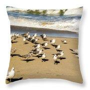 Gulls At The Beach Throw Pillow