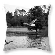 Gulls In Flight Mb083bw Throw Pillow