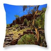 Gum Tree At Ellery Creek V2 Throw Pillow