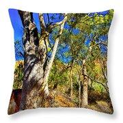 Gum Tree Ridge Throw Pillow