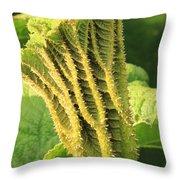 Gunnera Tinctoria Throw Pillow