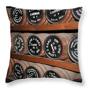Gunpowder Depot Throw Pillow