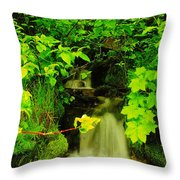 Gurgling Down The Mountain Throw Pillow