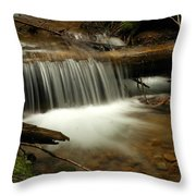 Gurgling Over A Small Log Throw Pillow