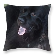 Gus Hanging Out Throw Pillow