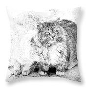Gutter Kitties Seven Throw Pillow