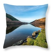 Gwydyr Forest Lake Throw Pillow by Adrian Evans