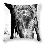 Gypsy Upclose Throw Pillow