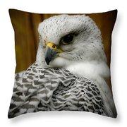 Gyrfalcon Soft Tone Throw Pillow