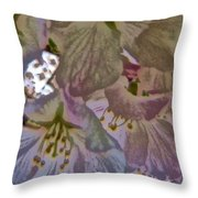H Cherry Blossom Cont L Throw Pillow