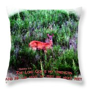 Habakkuk 3 19 Throw Pillow