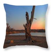 Habitat Throw Pillow