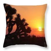 Hacienda Del Sol Throw Pillow