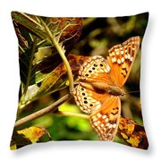 Hackberry Emperor Butterfly Throw Pillow