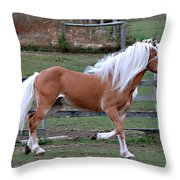 Haflinger Stallion Throw Pillow