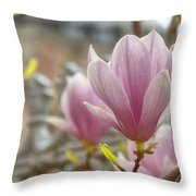 Hagia Sophia Magnolia Throw Pillow
