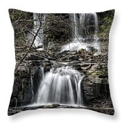 Haines Falls Throw Pillow