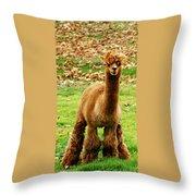 Hairy Brown Gumby Aka Brown Alpaca Throw Pillow