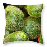 Hairy Peary Chayote Squash By Diana Sainz Throw Pillow
