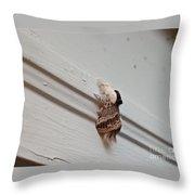 Hairy Russian Moth Throw Pillow