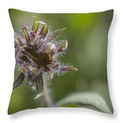 Hairy Scary Throw Pillow