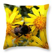 Hairy Visitor Throw Pillow