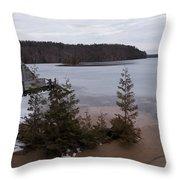Hale Michigan Throw Pillow