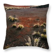 Haleakala - Red And Black Throw Pillow
