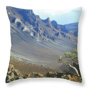 Haleakala Volcano And Chukar Maui Hawaii Throw Pillow