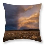 Half And Half Throw Pillow