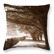 Half Moon Bay Pathway Throw Pillow
