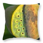 Half Moon In Half Lotus Position Throw Pillow