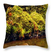 Half The Punchbowl Throw Pillow