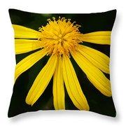Half Yellow Throw Pillow