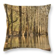 Hall Of Cypress Throw Pillow