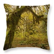 Hall Of Mosses 5 Throw Pillow