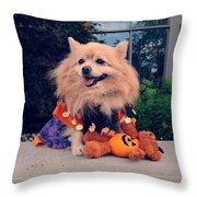 Halloween Dog Throw Pillow