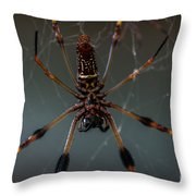 Halloween Spider Throw Pillow