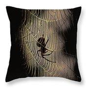 Halloween - Spider Throw Pillow