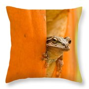 Halloween Surprise  Throw Pillow by Jean Noren