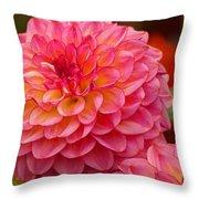 Hamari Rose - Dahlia Throw Pillow