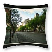 Hamilton At Dawn Throw Pillow