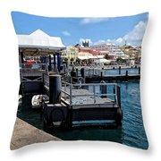 Hamilton Dock Throw Pillow