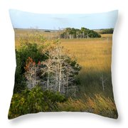Hammocks In The Everglades Throw Pillow