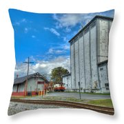 Hampstead Train Station And Grain Mill Throw Pillow