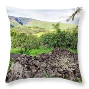 Hana Church 11 Throw Pillow