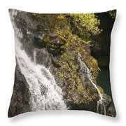 Hanawi Falls Throw Pillow