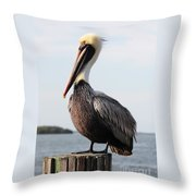 Handsome Brown Pelican Throw Pillow