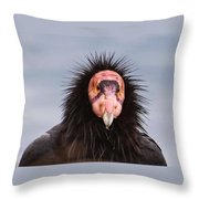 Handsome California Condor Throw Pillow